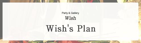 Wish's Plan